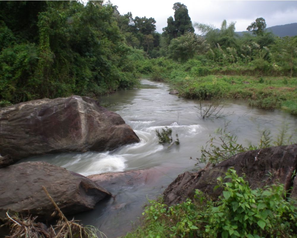 Best Time To Visit In Coorg