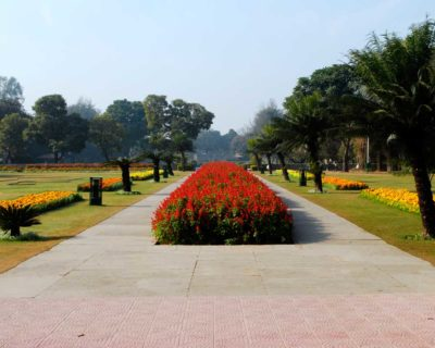 Terraced Garden In Chandigarh