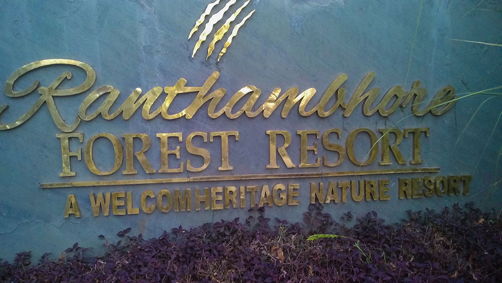 Ranthambhore Forest Resort 9