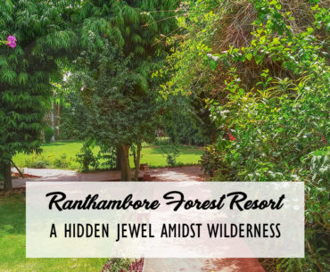 Ranthambore Forest Resort Cover