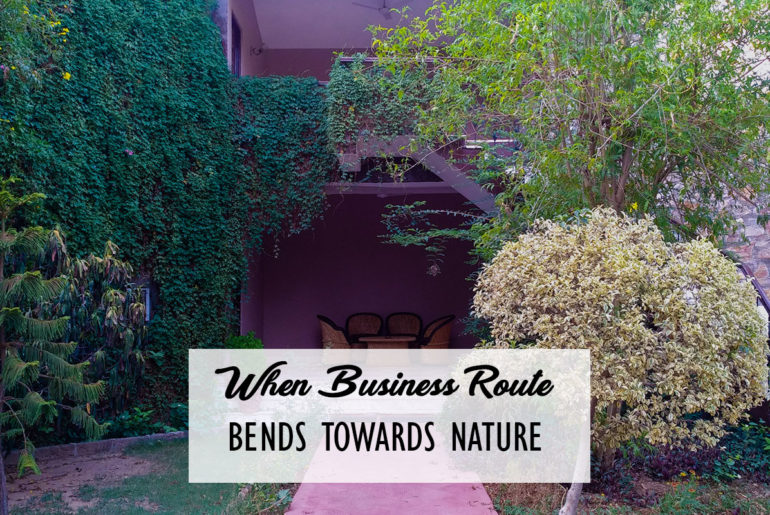 When Business Route Bends Towards Nature Cover